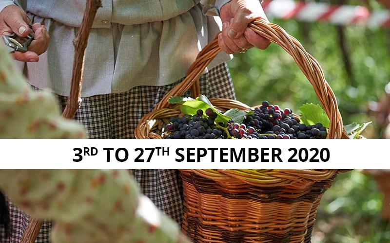 Madeira wine fest 2020