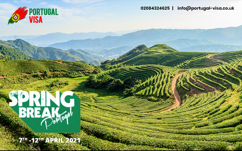Spring Break Portugal 2021